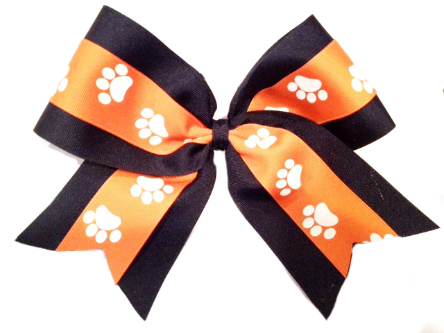 Competition Bow